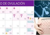 necesito una aplicación de calendario de ovulacion