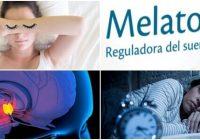 función de la melatonina