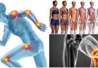 definición de artrologia