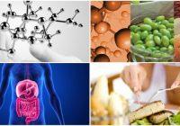 Los peptidos como cadenas de aminoacidos