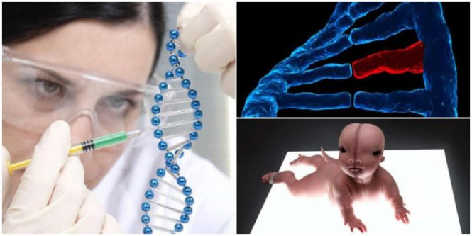 definición de las alteraciones genéticas en biología