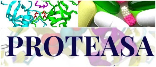 proteasa bacteriana