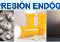 definición de la depresión endogena