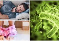 síntomas de parásitos en adultos