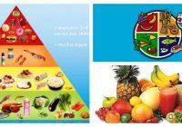 piramide alimenticia animada