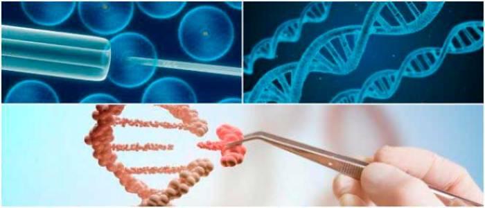 estudios de la terapia génica para la curación genética