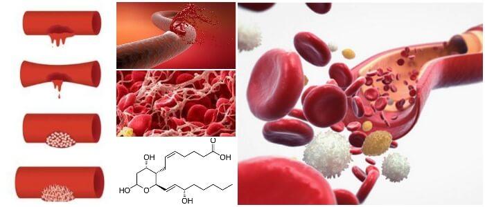 el tromboxano en la bioquimica