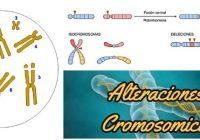 cuales son las alteraciones cromosomicas estructurales