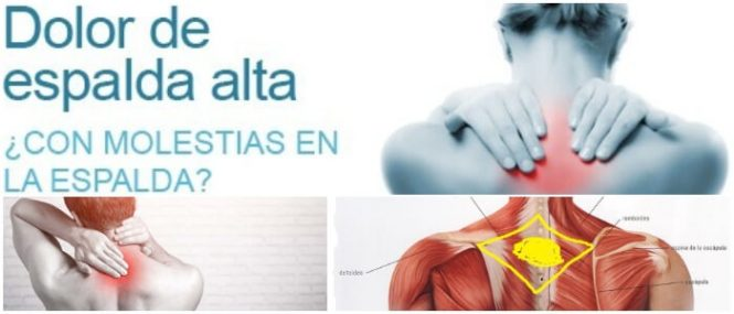 Dolor En La Espalda Alta: Causas, Síntomas, Tratamientos..