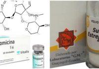 cual es la presentación de la estreptomicina
