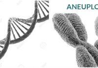 consecuencias del aneuploide en el cromosoma 21