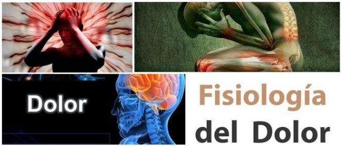 Fisiología del Dolor: Procesos Del Dolor, Transducción, Aspectos ...