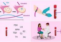 consecuencias de la hormona fsh baja en hombres