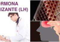 cual es el significado de la hormona lh alta