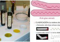 cuales son algunos ejemplos de lipidos saponificables