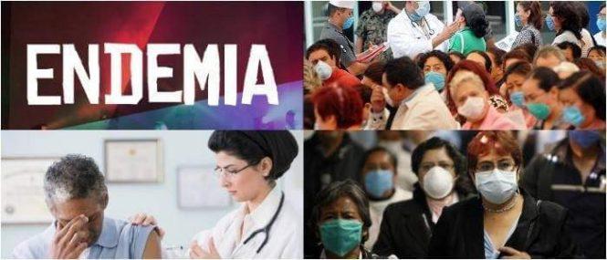que son la endemia, pandemia y epidemia