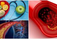 cual es la función del colesterol a nivel celular