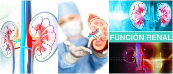 Del creatinina enfermedades rinon