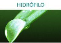 los hidrófilo absorben agua