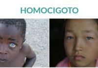que es un gen homocigoto dominante