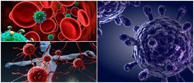 que es la inmunodeficiencia primaria