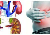 artículos de insuficiencia renal aguda
