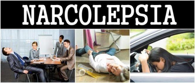 cuales son las causas de narcolepsia