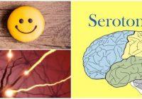 que es el síndrome de serotonina