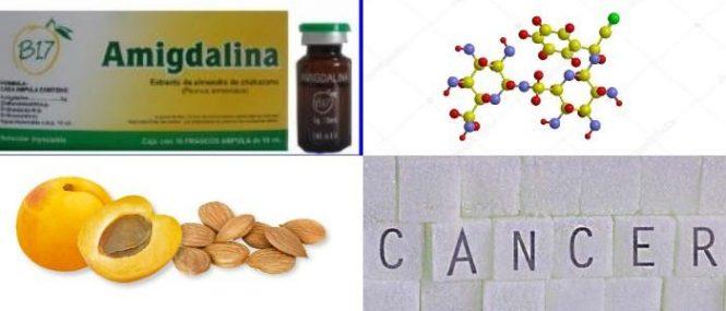 donde conseguir un medicamento de amigdalina