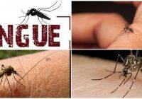 cuales son las consecuencias del dengue hemorrágico