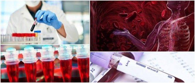 cuales son las enfermedades de la hematología