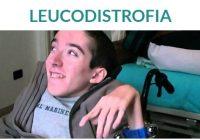 la enfermedad de Refsum es una leucodistrofia