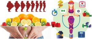 Metabolismo: Definición, Proceso de Digestión, Ley de..