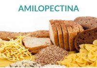 la amilopectina pertenece a la glucosa