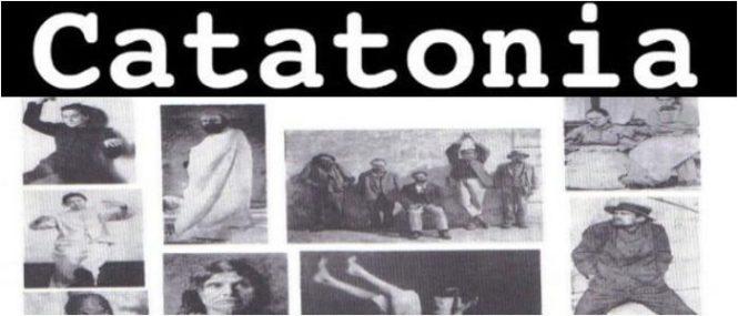 definicion de catatonia
