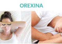 la orexina regula el sueño y la vigilia