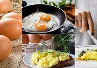Los huevos aportan proteinas al cuerpo