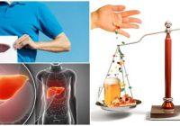 el hepatoprotector y la silimarina
