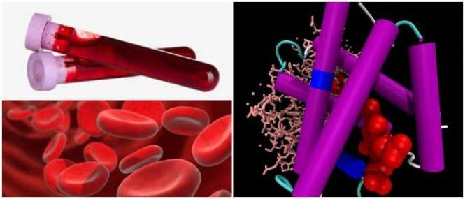 cual es la definición de metahemoglobina