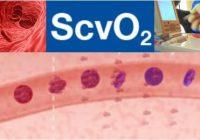 cual es el significado de scvo2