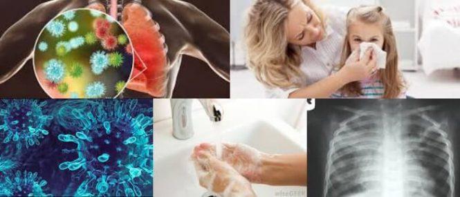 cual es la definición de metapneumovirus