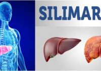 cuales son las contraindicaciones de silimarina