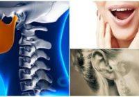 cual es la anatomía de la articulación temporomandibular