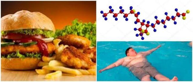 alimentos con lipidos o grasas