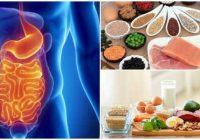 digestion bioquimica