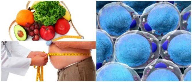 choque metabolico nutricion
