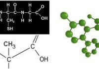 residuos de aminoácidos